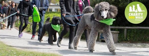 dogwalksveland